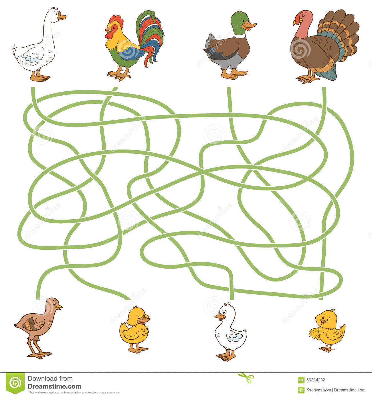 Maze Game Help The Young Find Their Parents Farm Birds