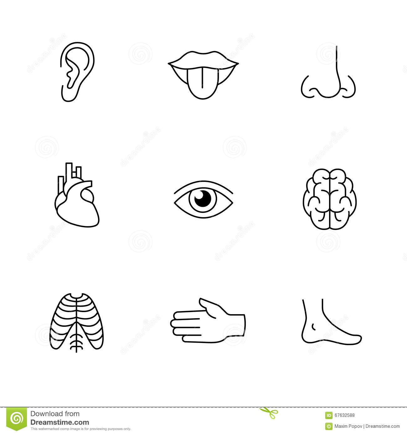 Parts Eye Clip Art