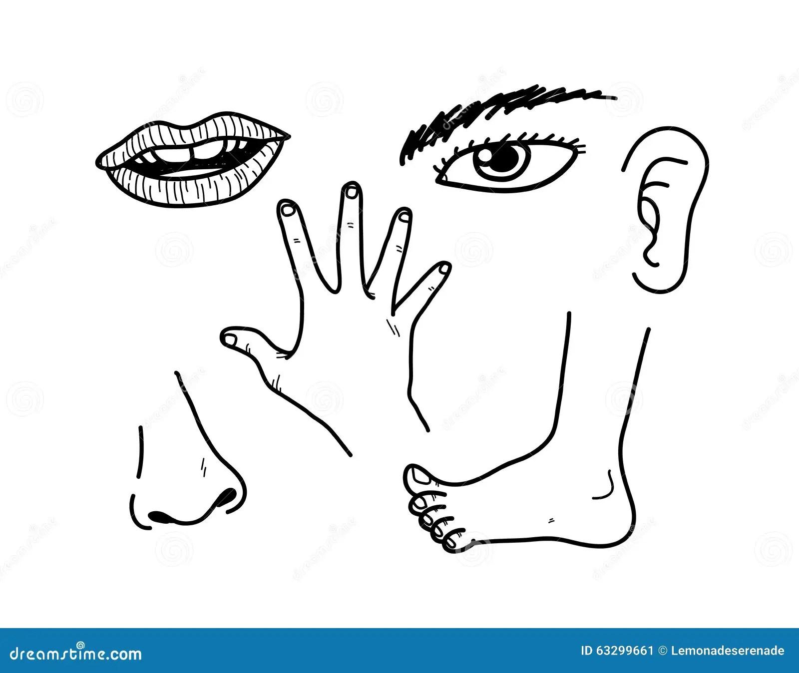 Menselijke Lichaamsdelen Vector Illustratie Illustratie Bestaande Uit Illustratie