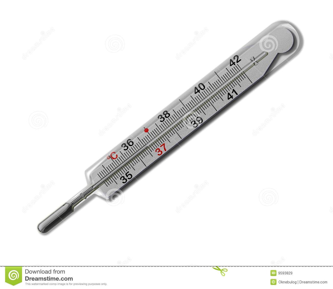 Mercurial Thermometer 36 6 Isolated Royalty Free Stock