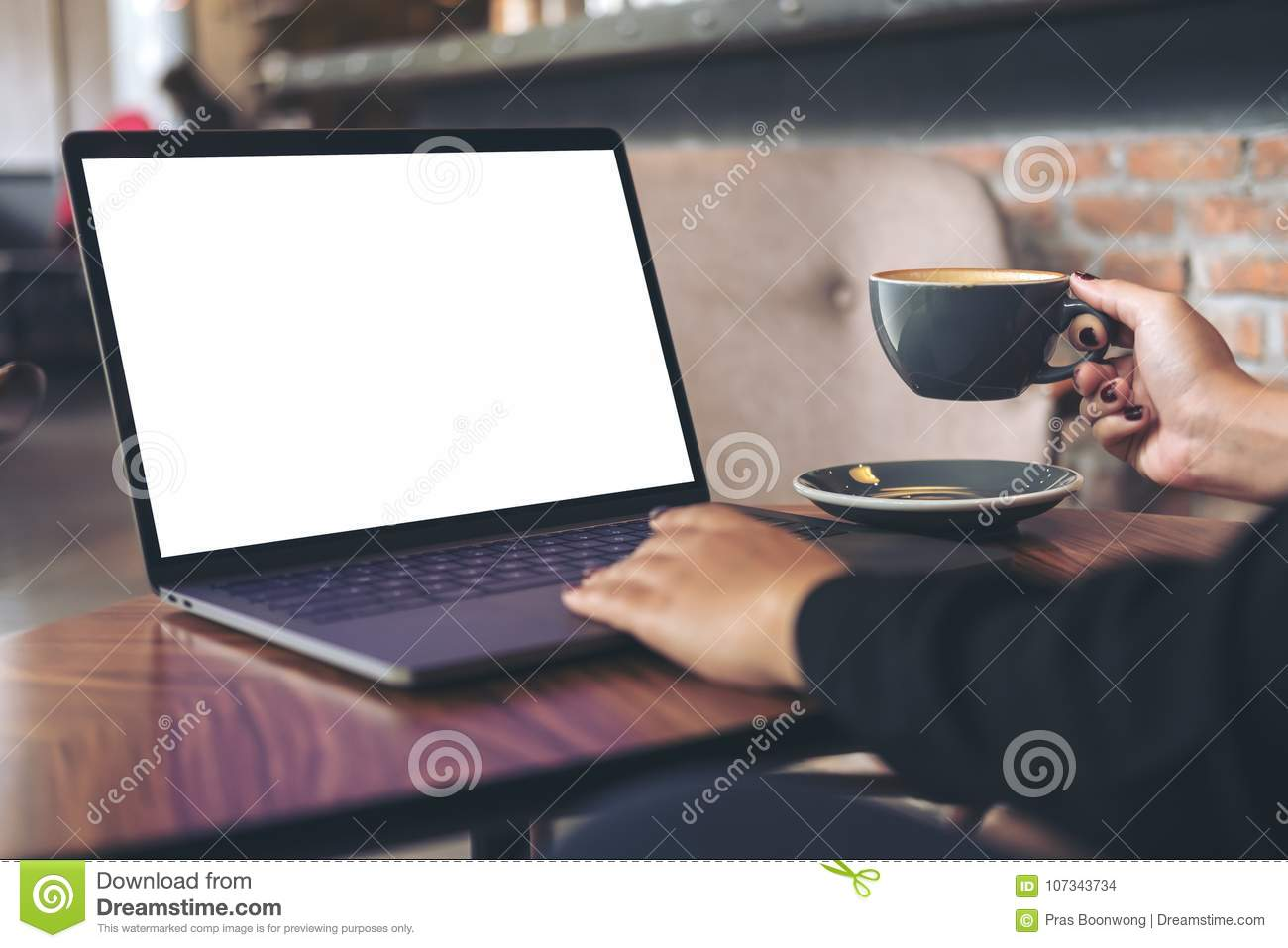 Mockup Image Of A Businesswoman Using Laptop With Blank White