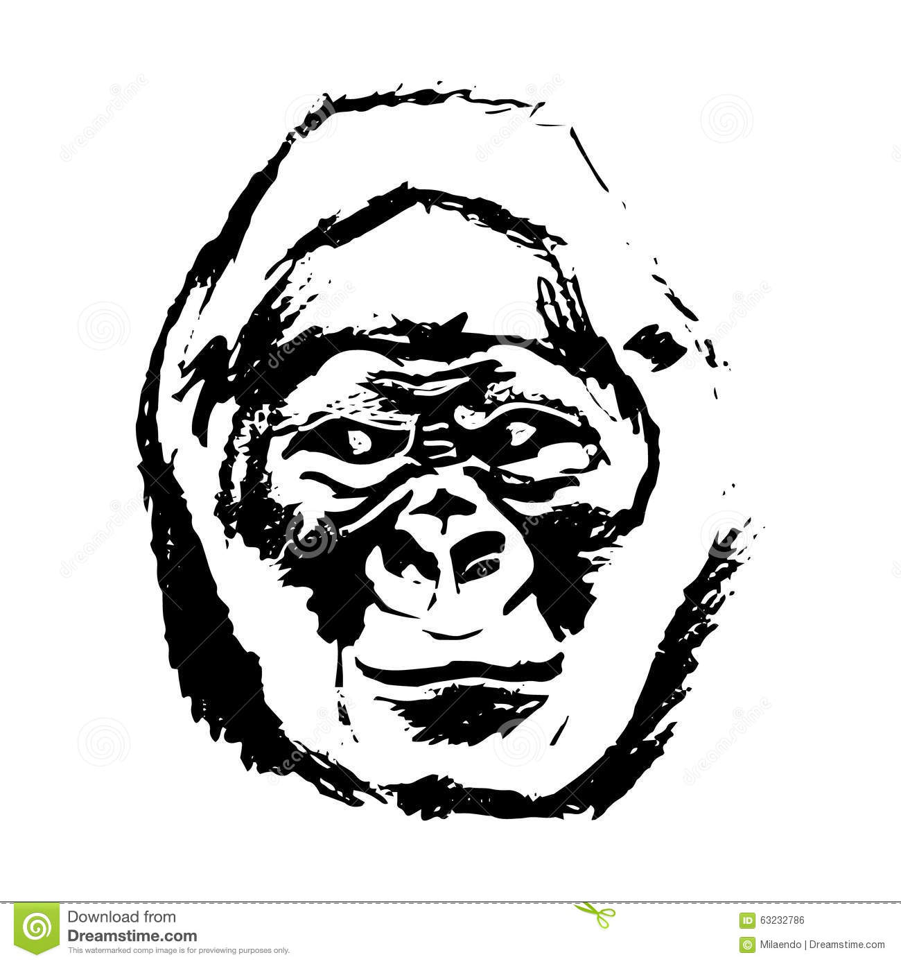 Gorilla Face Head Portrait Isolated On White Royalty Free