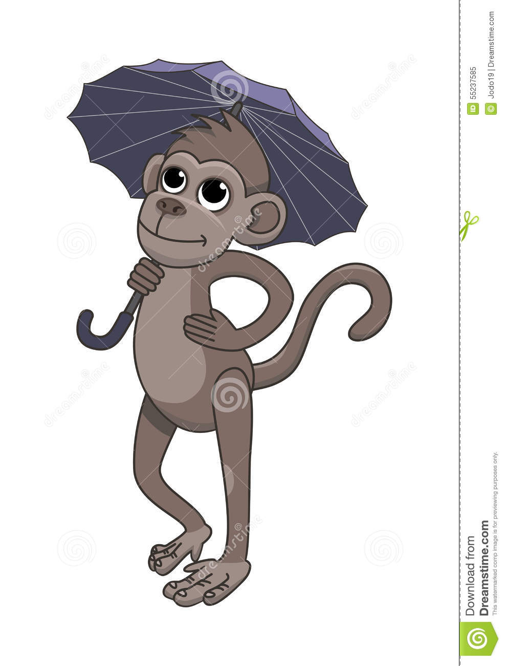 And Black Holding Umbrella White Monkey
