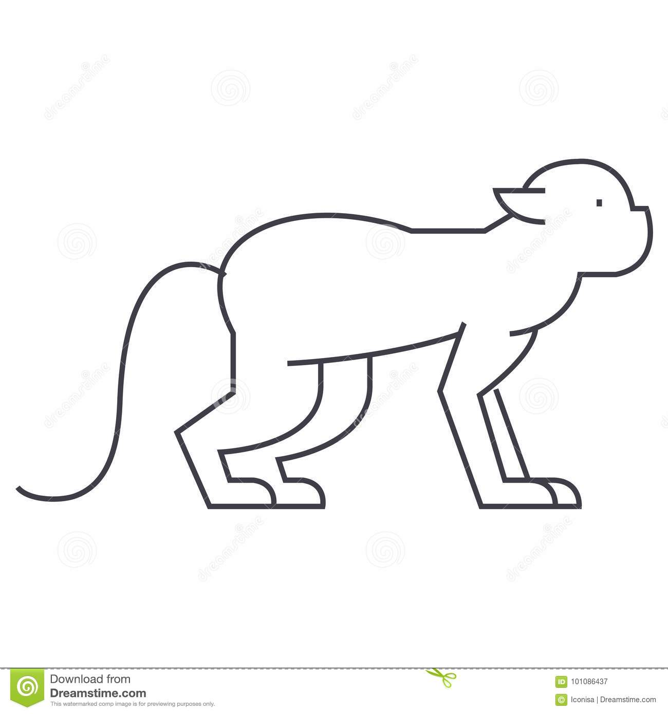 Baboon Cartoon Character Cartoon Vector