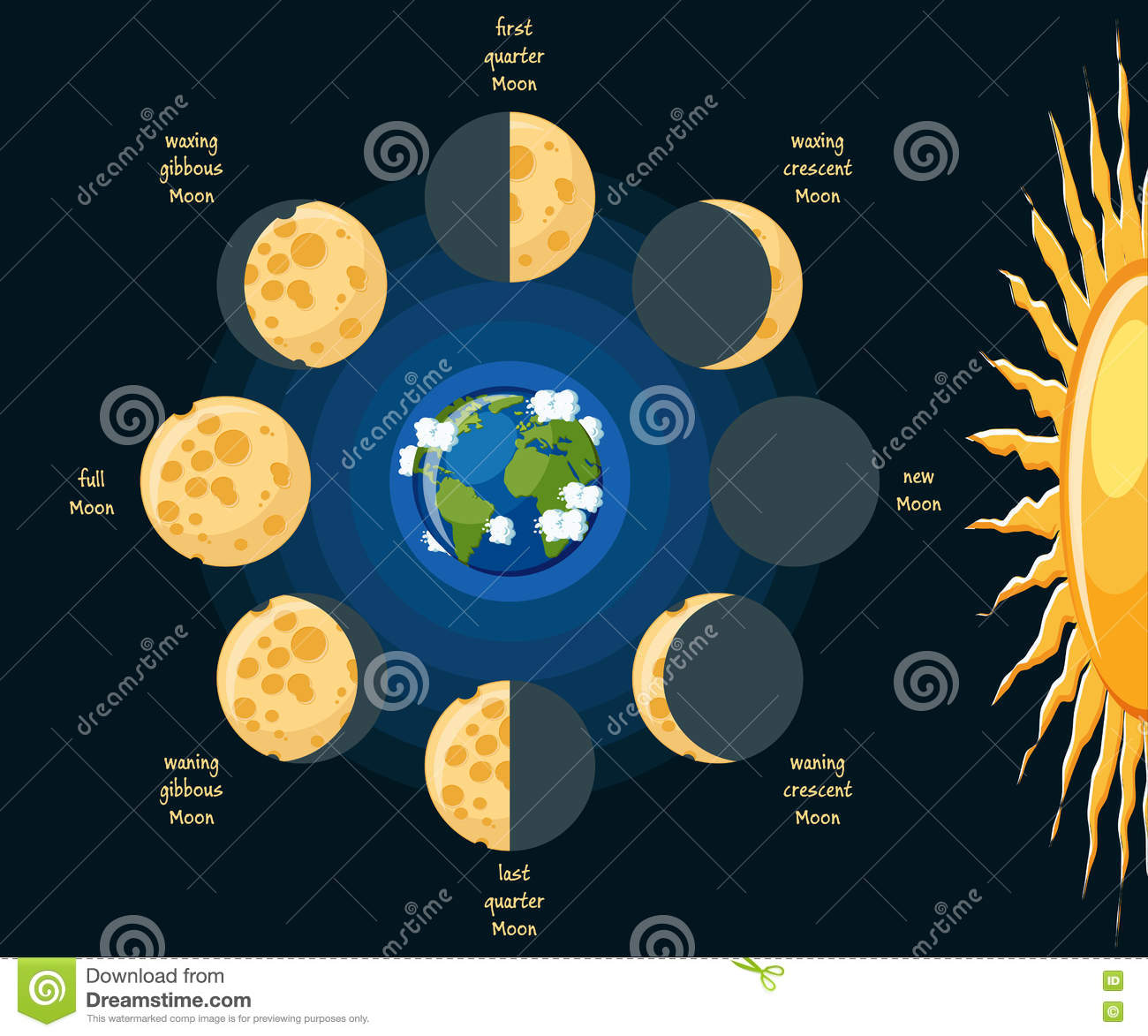 Moon Phases Stock Vector Illustration Of Half
