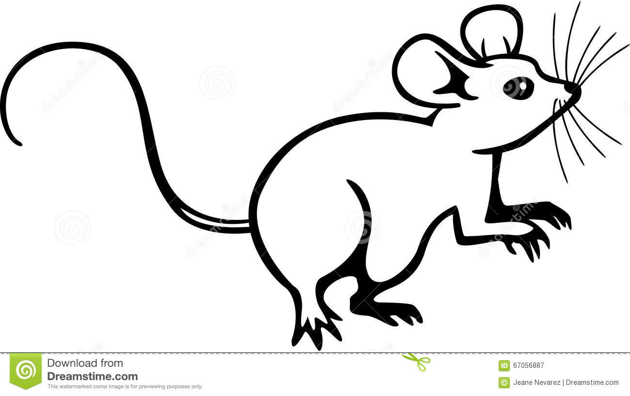 Mouse Cartoons Illustrations Amp Vector Stock Images