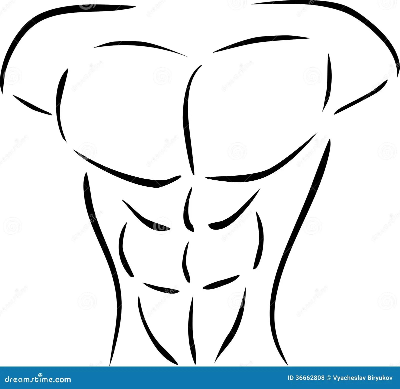 Muscular Body Stock Vector Image Of Vector Statue Body