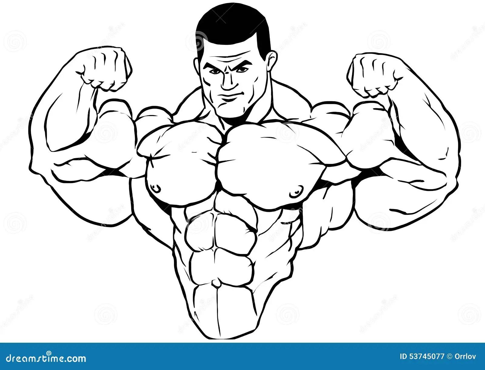 Muscular Torso Of A Bodybuilder Stock Vector