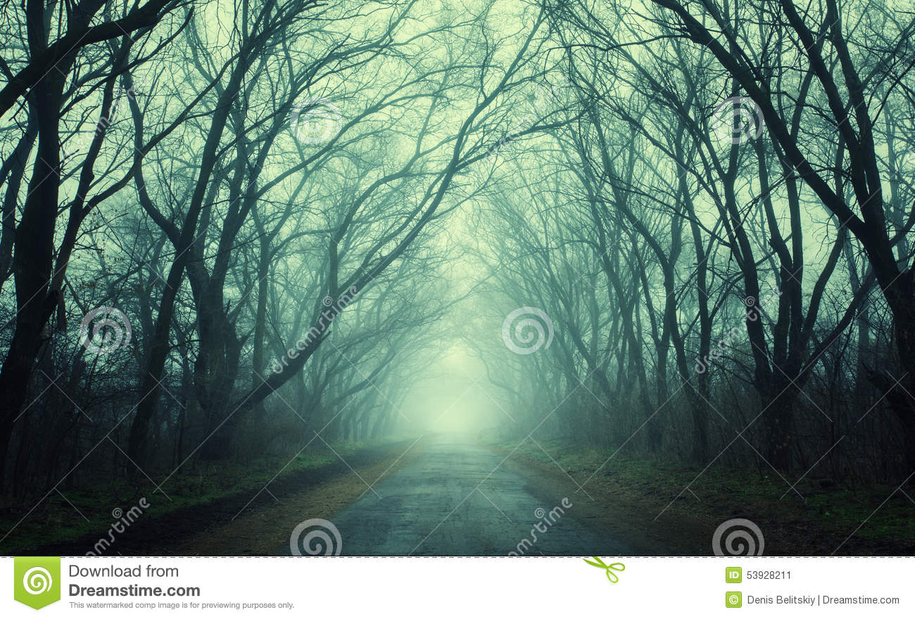 Mysterious Dark Autumn Forest In Green Fog With Road