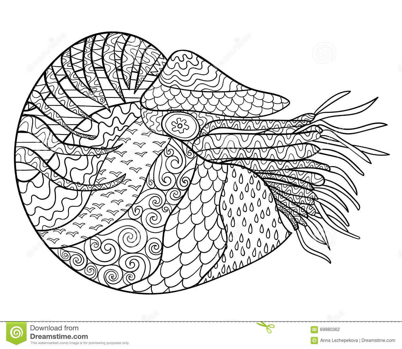 Nautilus With High Details Stock Vector Image 69980362