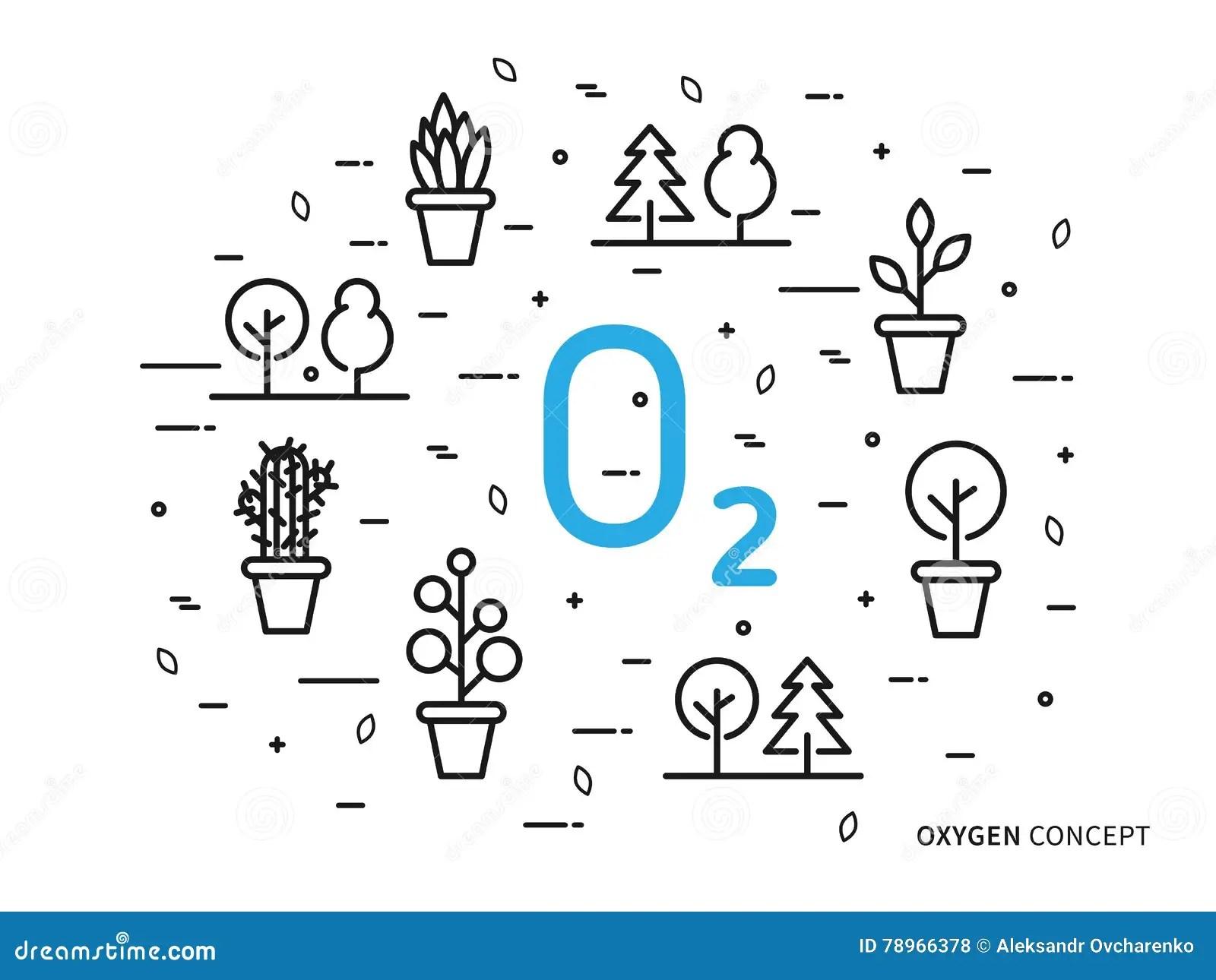 O2 Bond