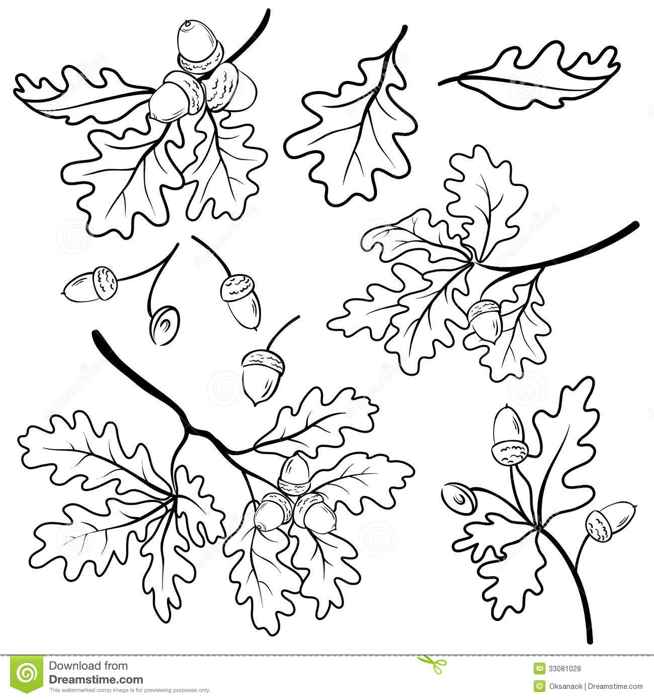 Oak Branches With Acorns Outline Stock Vector