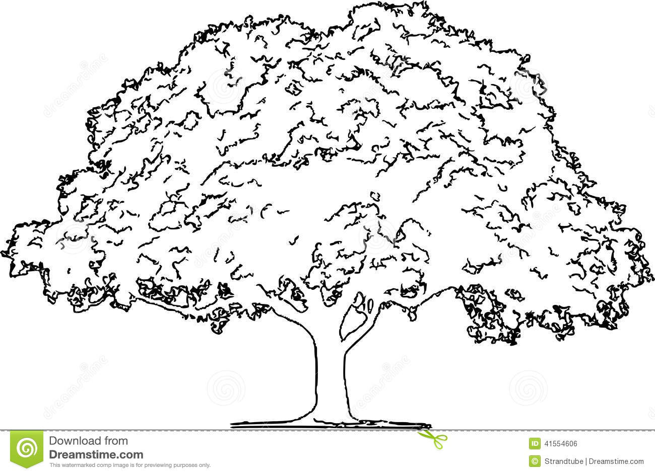 Royalty Free Stock Image Oak Tree Pencil Sketch Eps