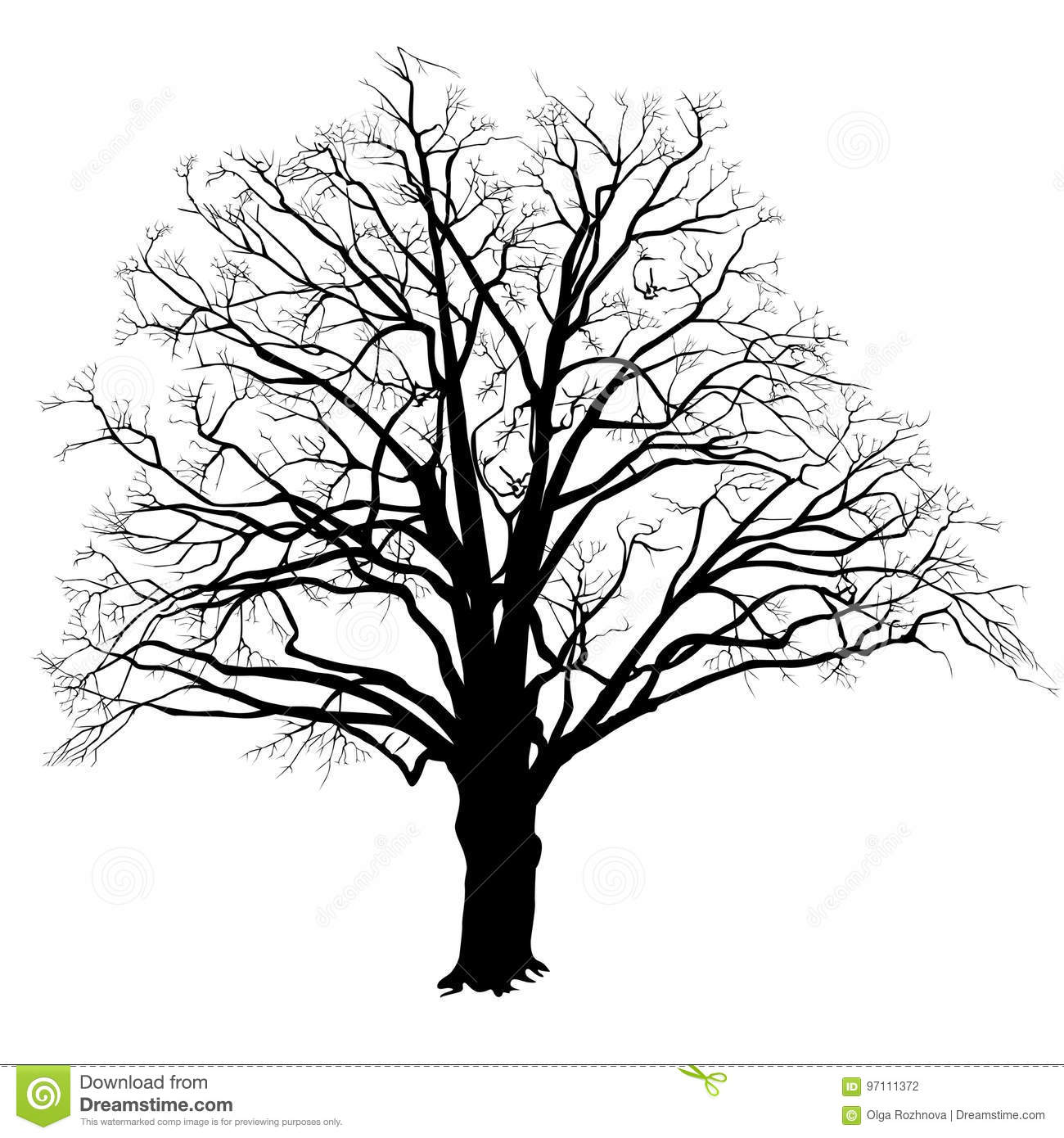 Oak Tree Silhouette With Fallen Leaves Black And White