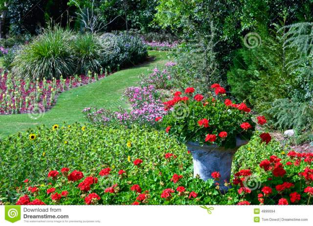 Znalezione obrazy dla zapytania ogrod kwiatow zdjecia