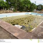 Old Abandoned Swimming Pool Stock Image Image Of Concrete Damage 95345141