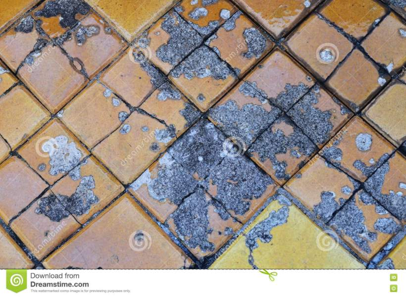 Old Cracked Ceramic Floor Tile Stock Image   Image of tile  black     Download Old Cracked Ceramic Floor Tile Stock Image   Image of tile  black   70974849