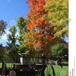 6 325 Old Farm Wagon Photos Free Royalty Free Stock Photos From Dreamstime
