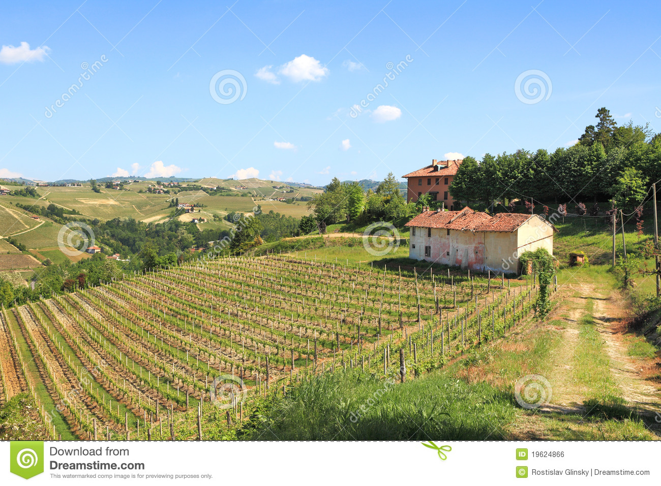 Old Farmhouse And Vineyards In Northern Italy Stock Photo Image 19624866