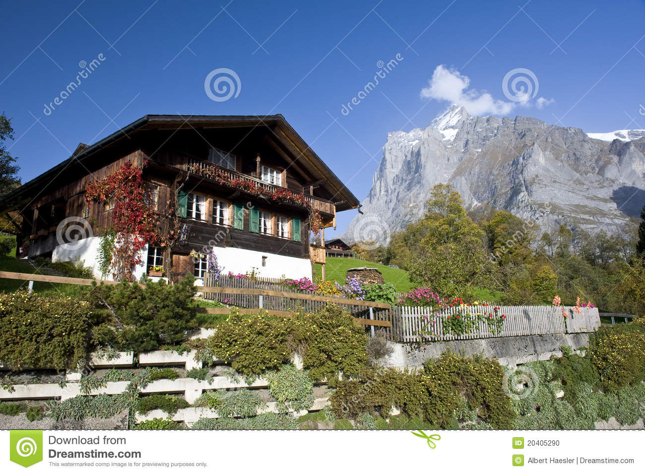 Old Mountain Farmhouse In Grindelwald Stock Photo Image