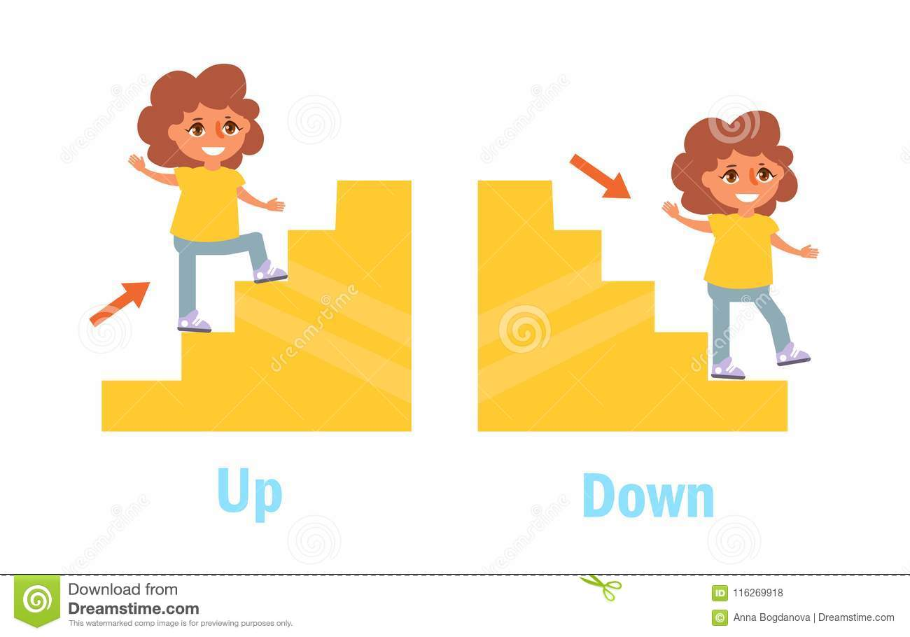 Opposite Adjectives Down And Up Cartoon Vector