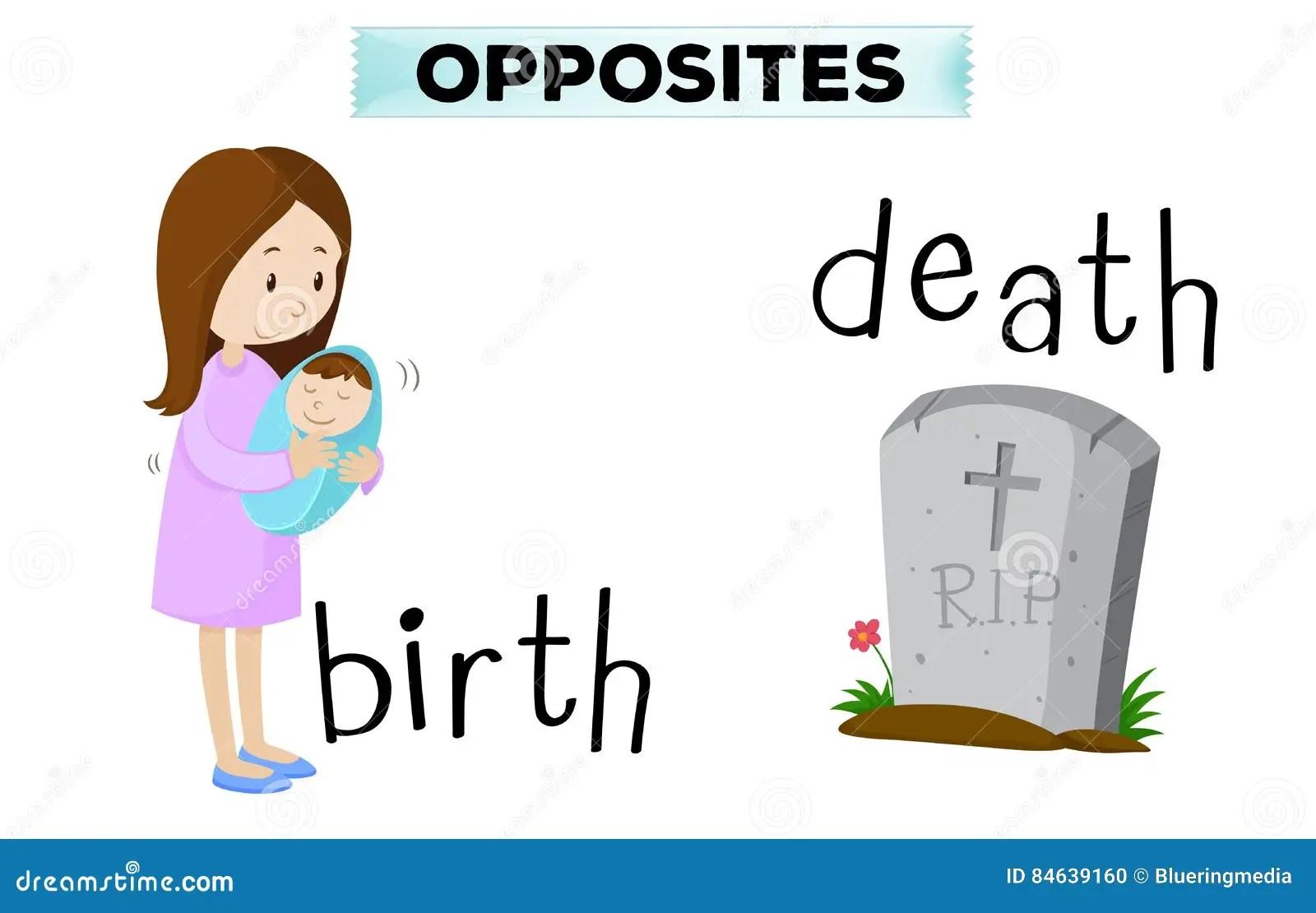 Opposite Flashcard Dla Narodziny I Mierci Ilustracja