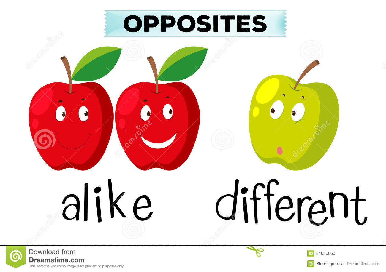 Opposite Words For Alike And Different Stock Illustration