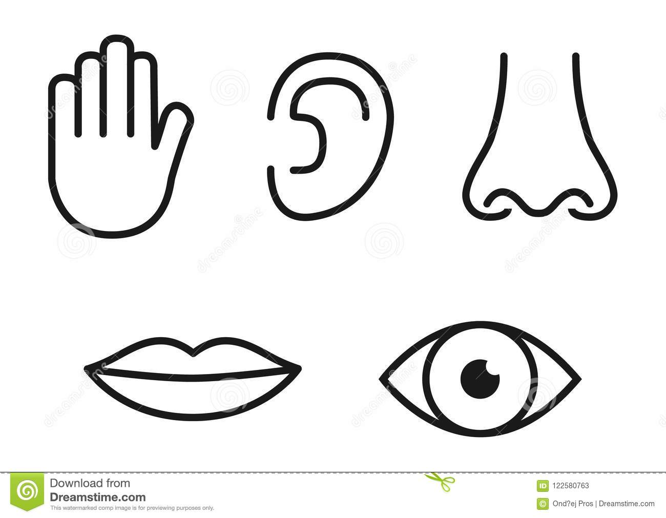 Outline Icon Set Of Five Human Senses Vision Eye Smell