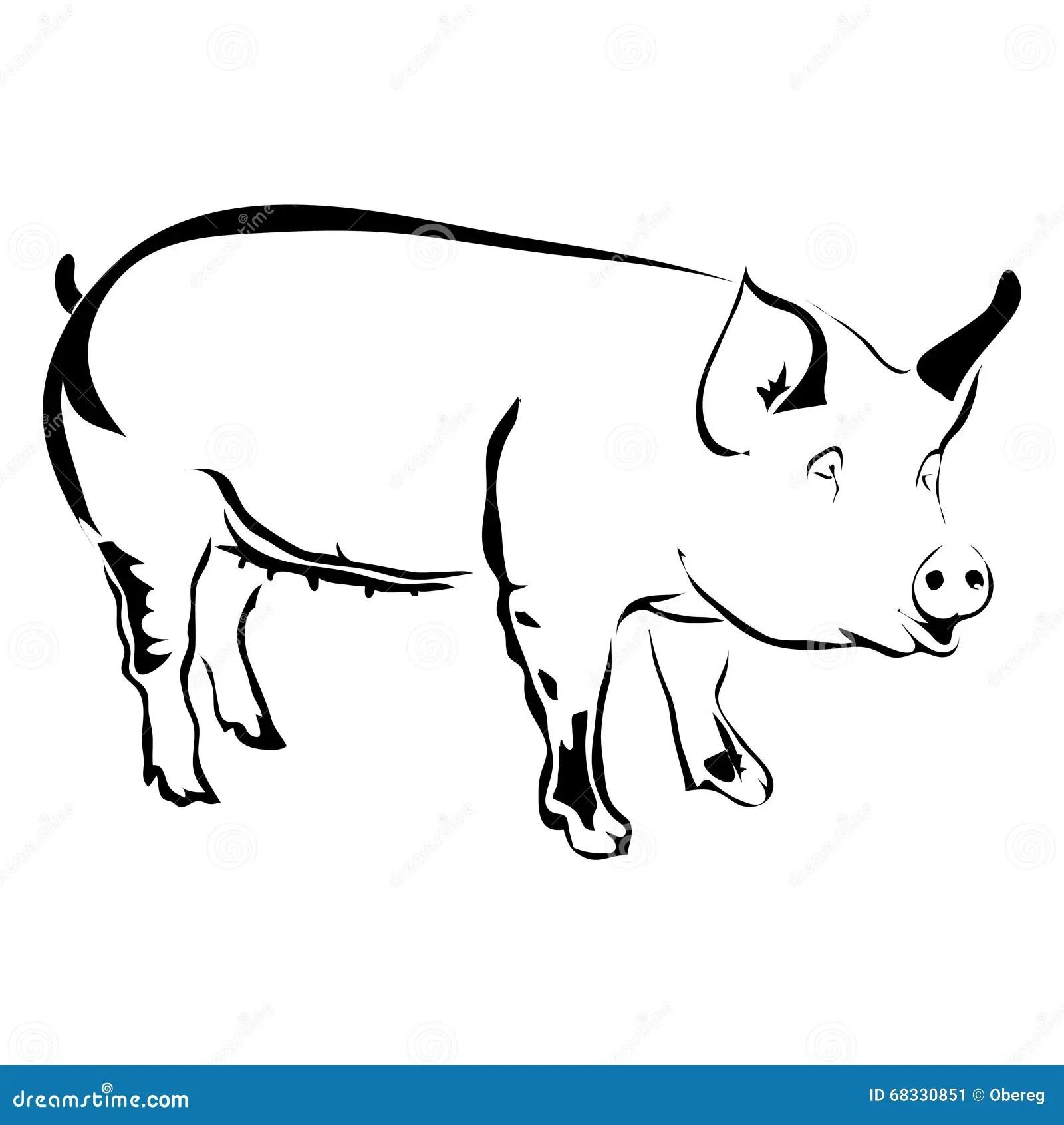 Outline Pig Vector Illustration Stock Vector
