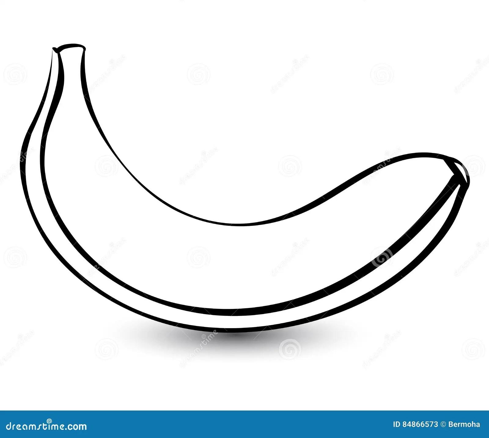 Outline Sketch Monochrome Banana Stock Vector