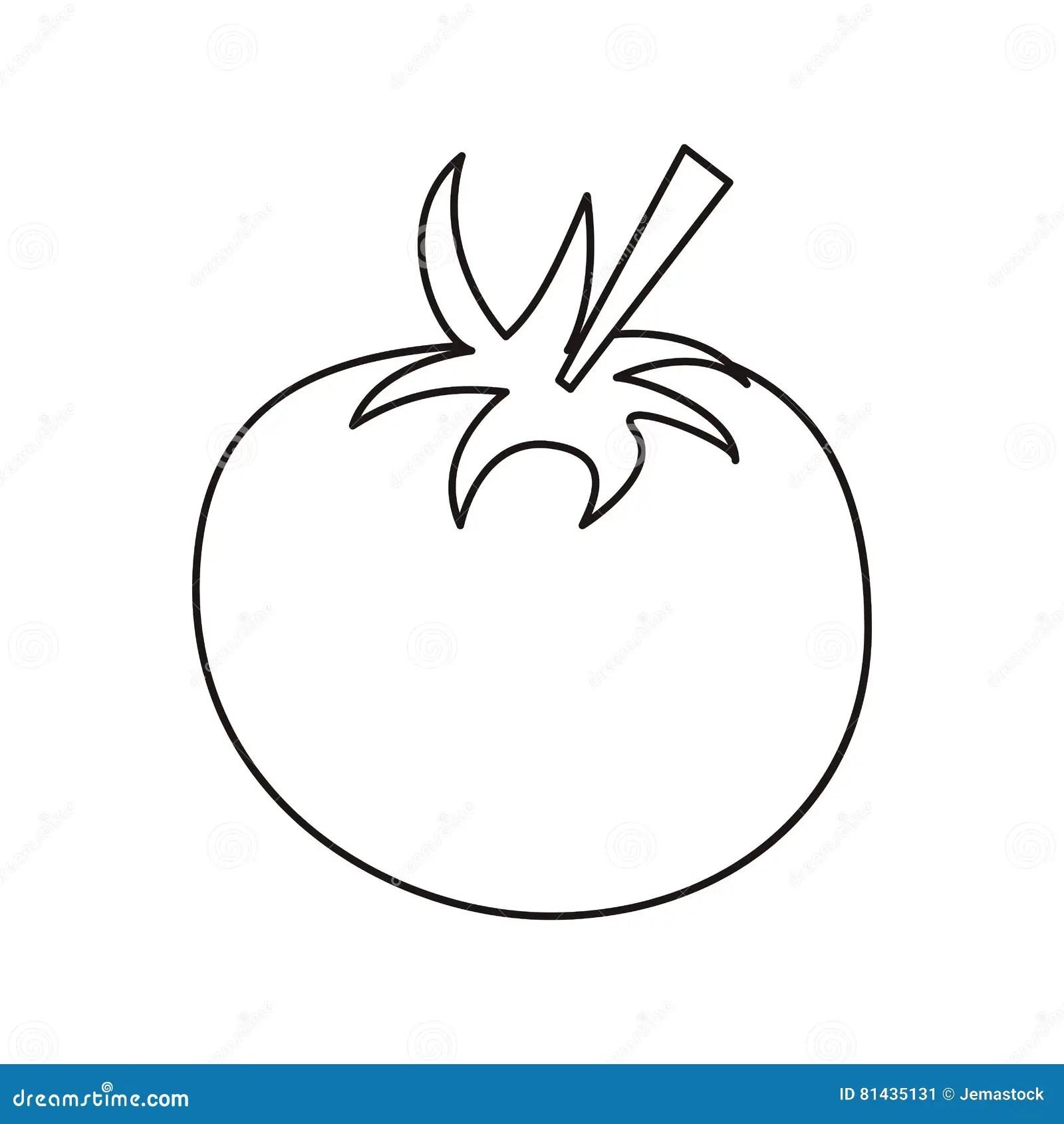 Outline Tomato Juicy Vegetable Icon Stock Vector