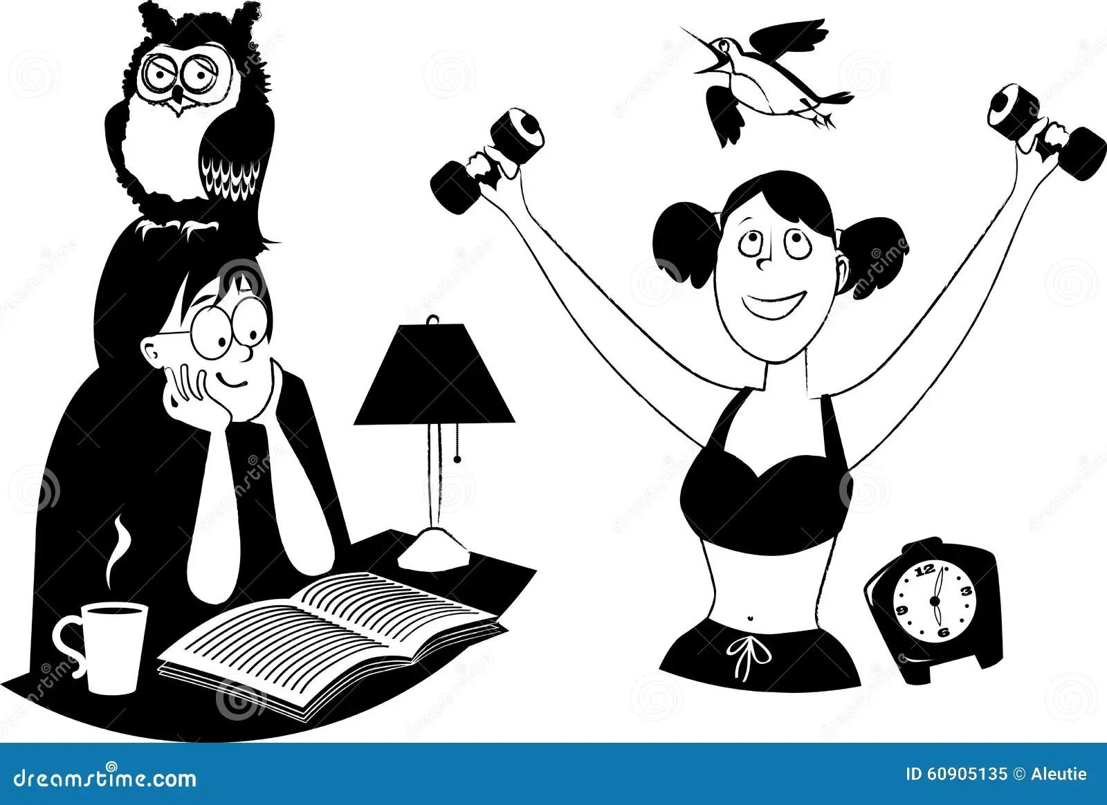 Owl Vs Lark Stock Vector Illustration Of Line Psychology