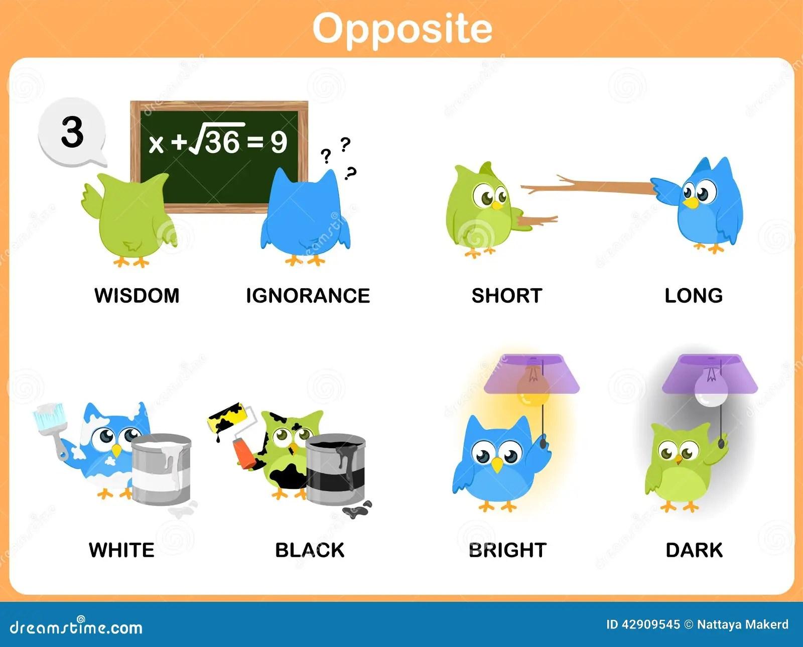 Palabra Opuesta Para El Preescolar Ilustracion Del Vector