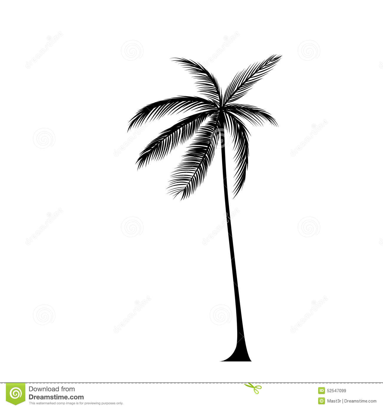 Palm Tree Black Silhouette Isolated Over White Stock