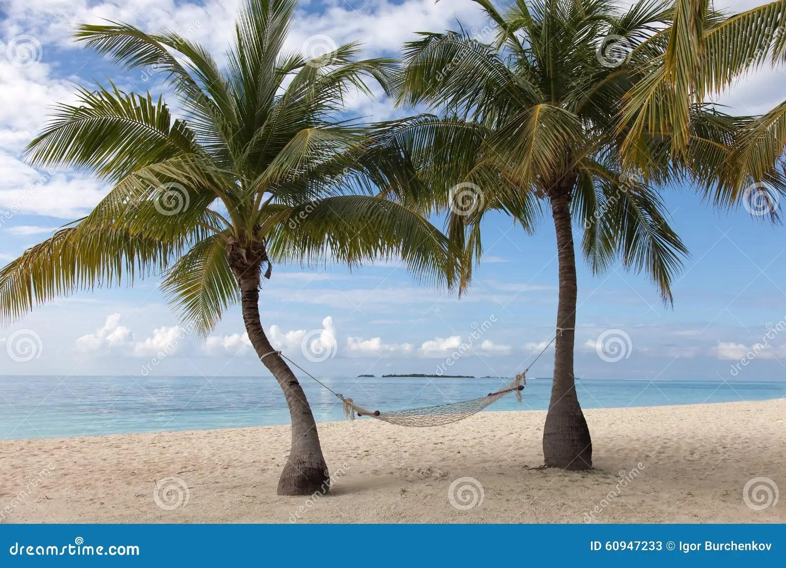 Palma Amaca E Spiaggia All Oceano Fotografia Stock