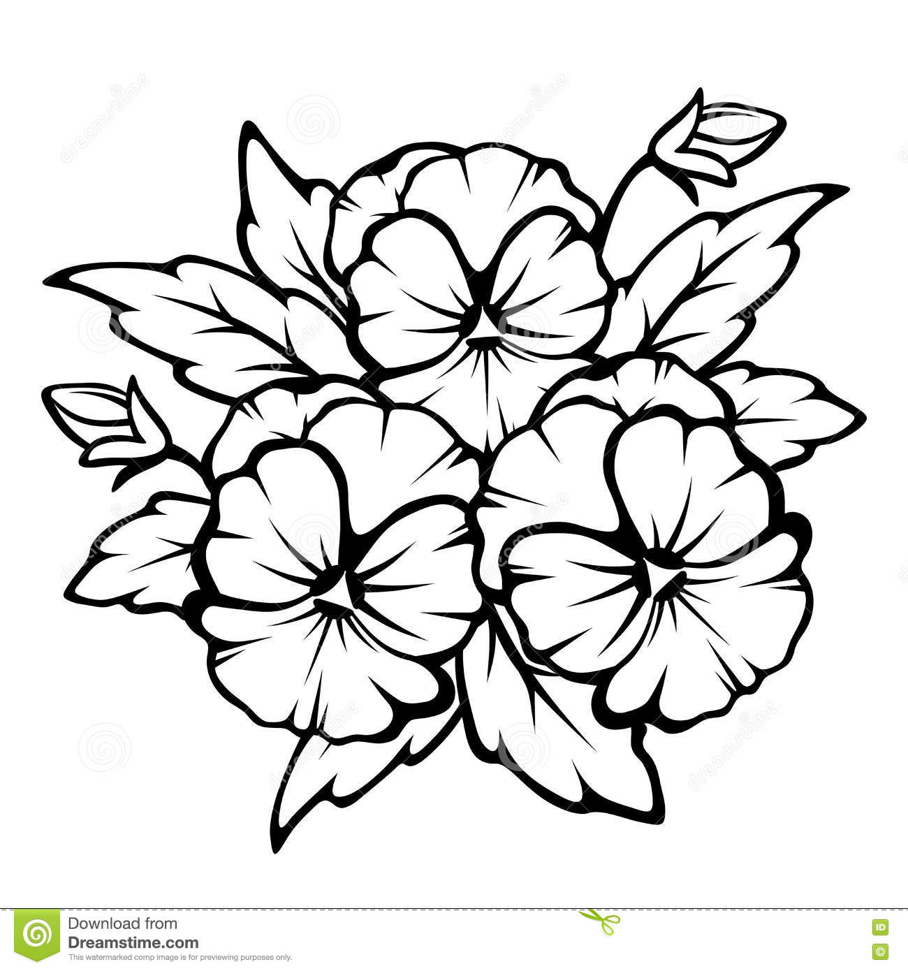Pansy Flowers Black Contours Vector Illustration Stock