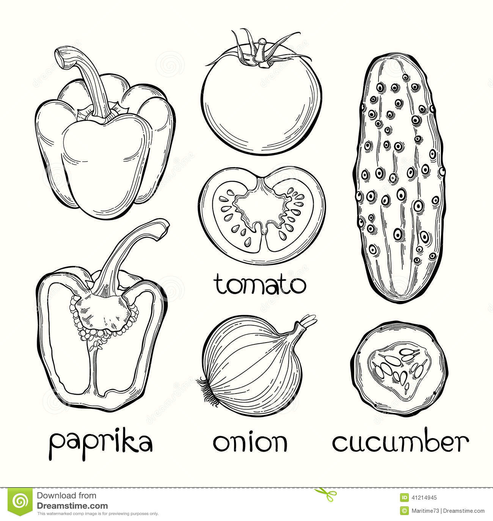 Paprika Tomato Onion Cucumber Vector Illustration On