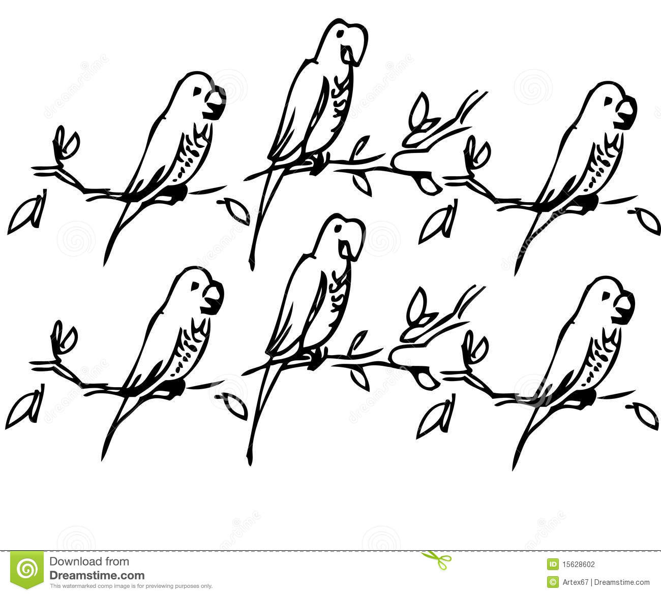 Parrot Stock Vector Illustration Of Bird Drawing Leaves