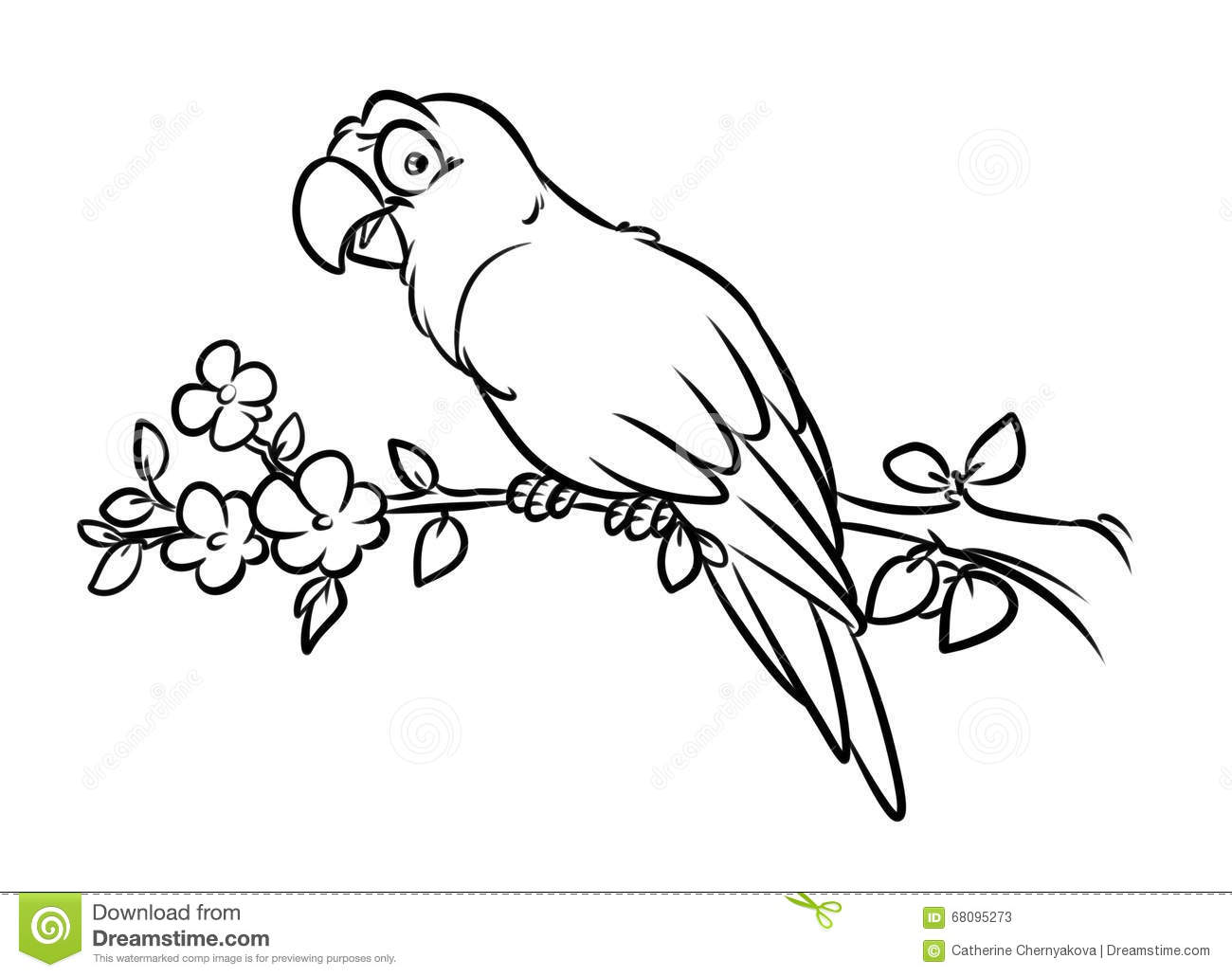 Parrot Coloring Pages Cartoon Illustration Stock