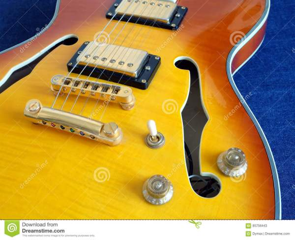 Part Of Vintage Semi-hollow Body Electric Guitars Royalty ...