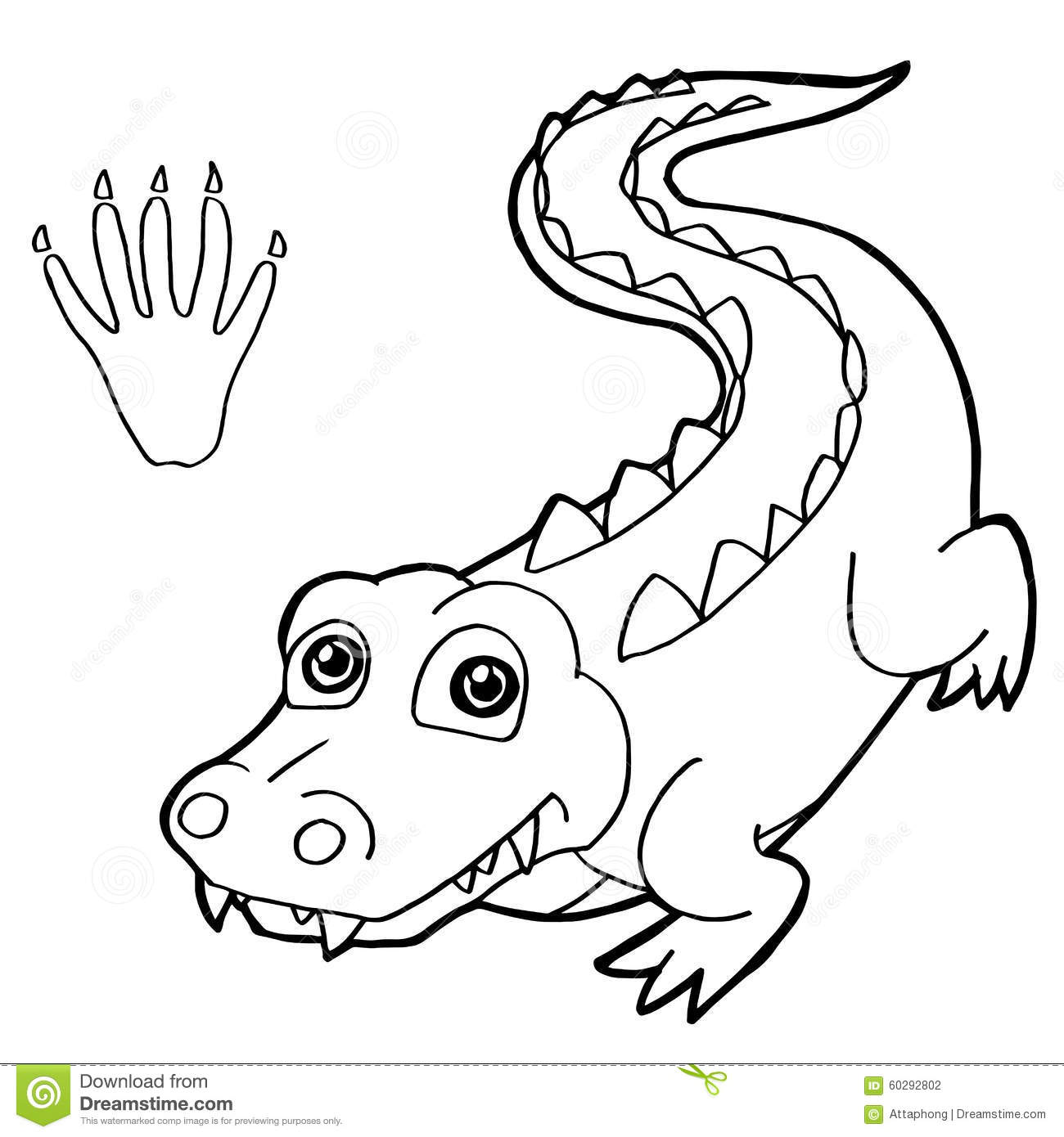 Paw Print With Crocodile Coloring Pages Vector Stock