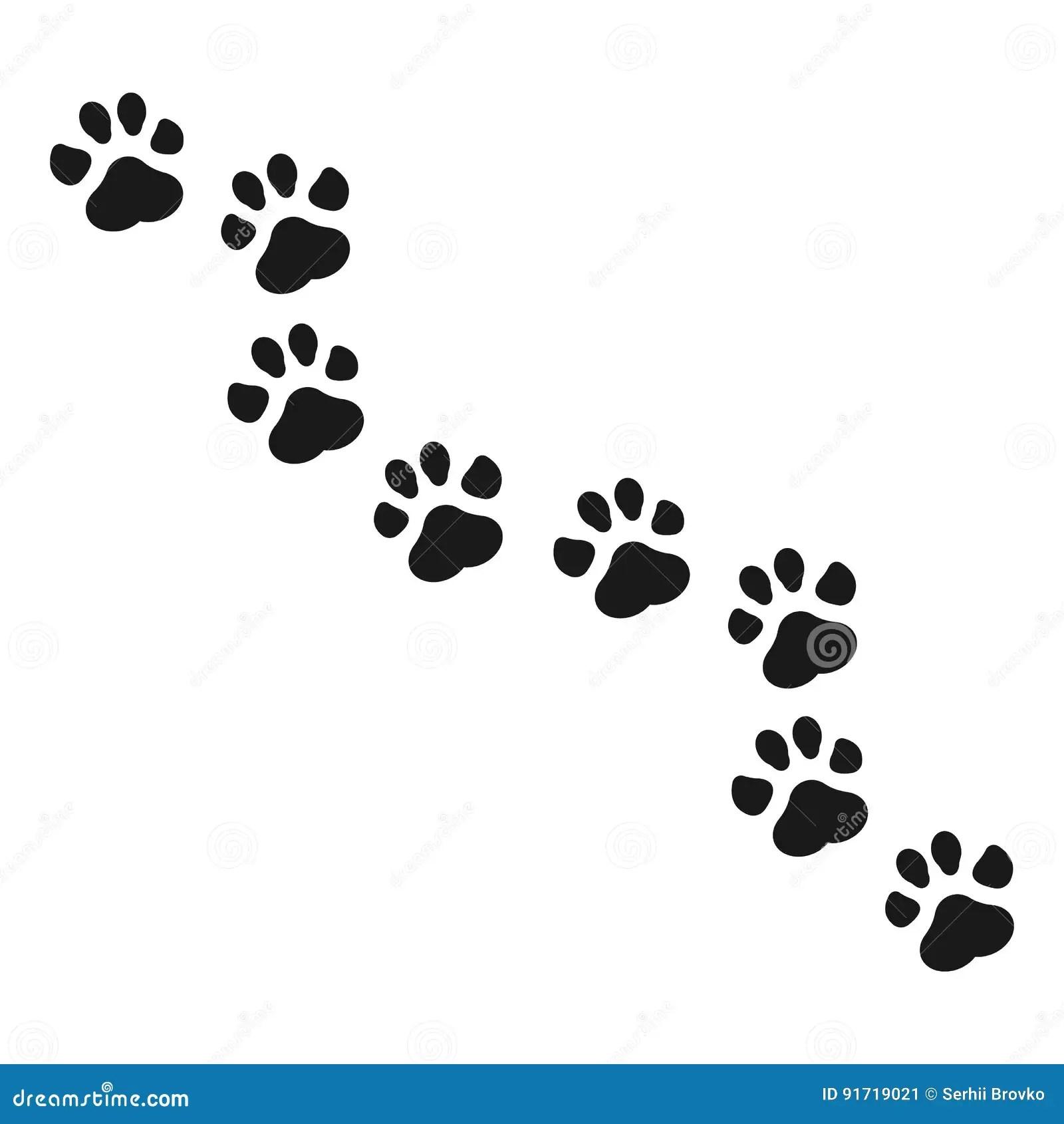 Raccoon Paw Print Stock Illustrations 162 Raccoon Paw