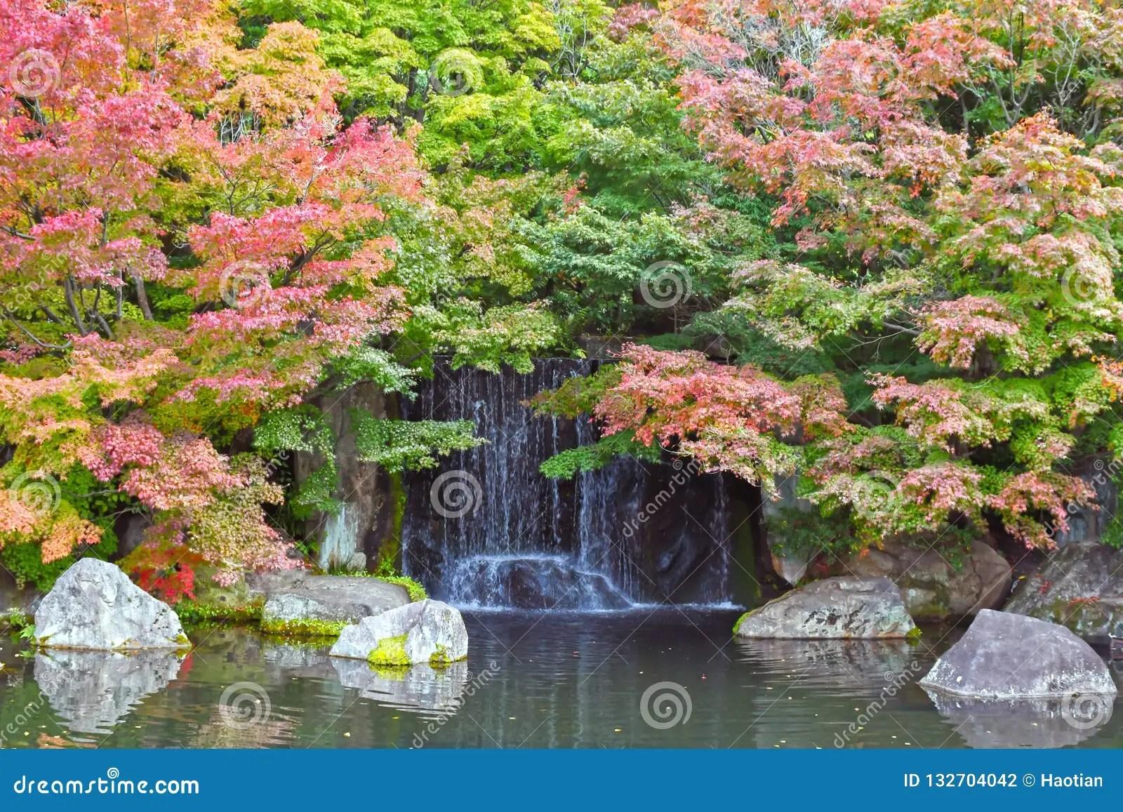 paysage japonais de cascade pendant l