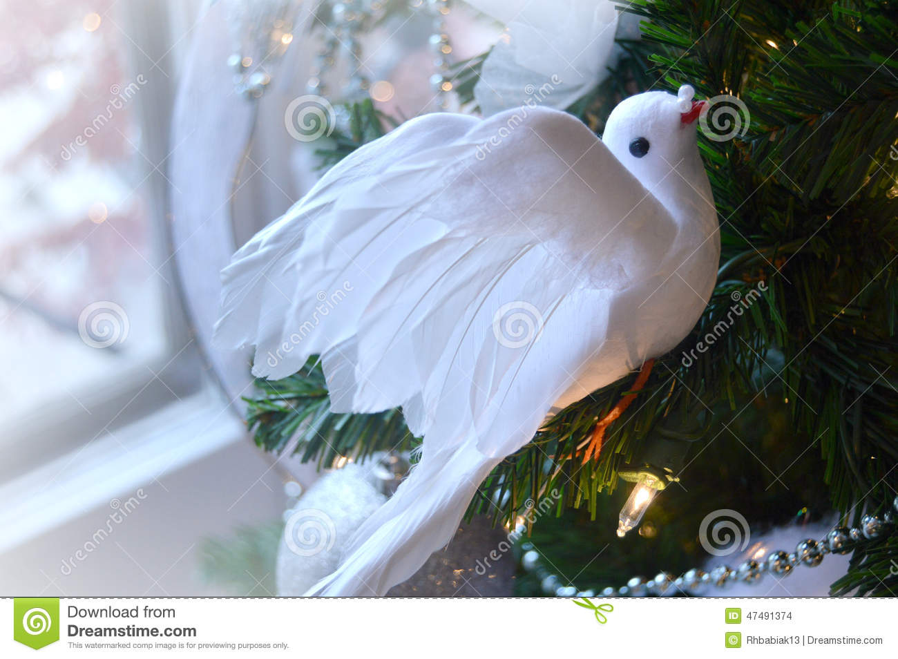 Peaceful Christmas Dove Stock Photo Image Of Card Peace