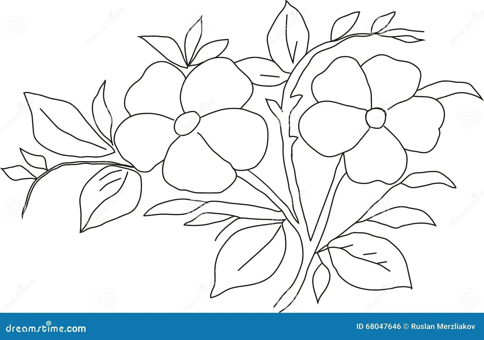 Pencil Drawing Violet Stock Illustration Illustration Of Drawing