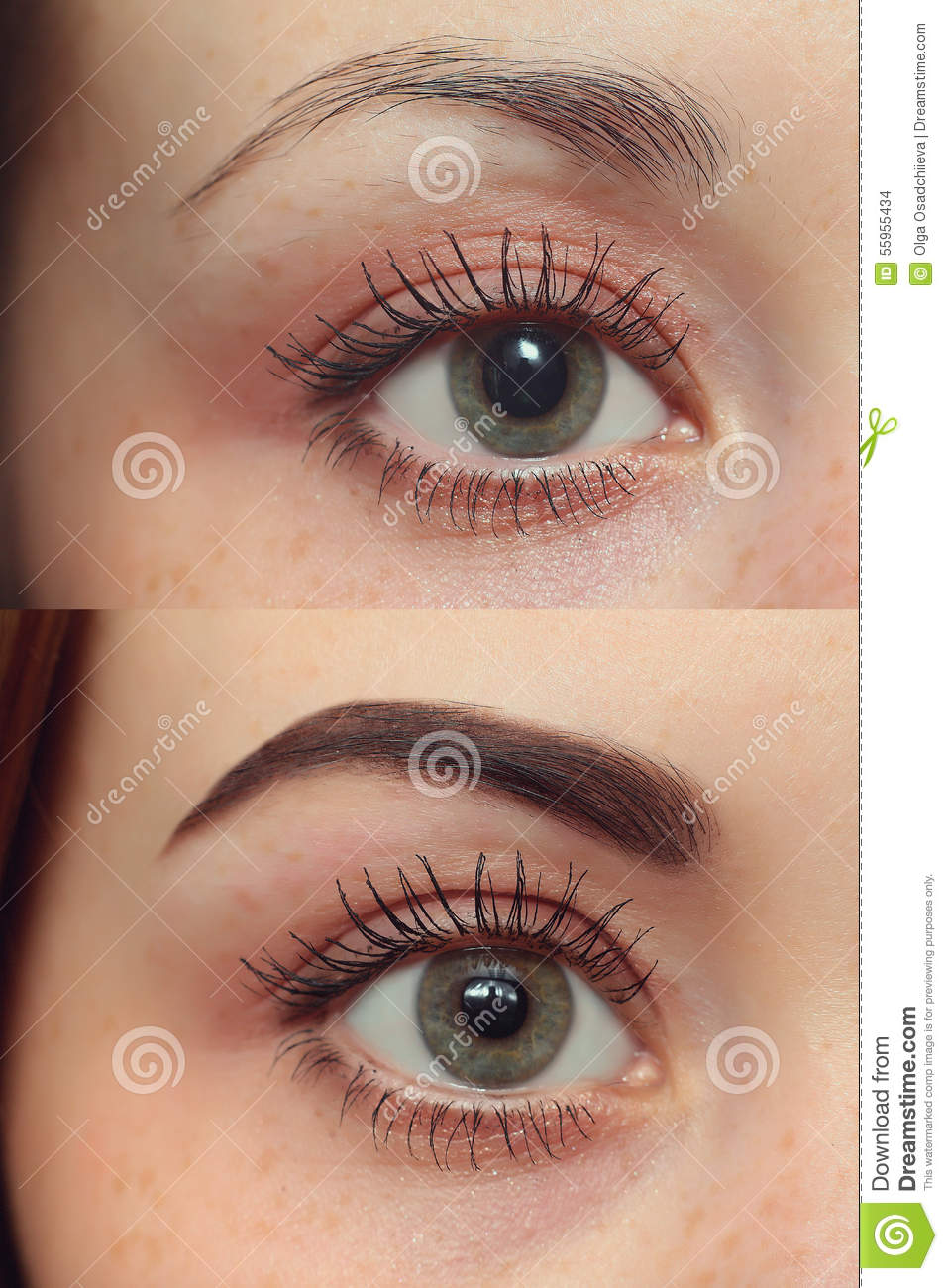 Perfect Eyebrows Before After Stock Photo Image 55955434
