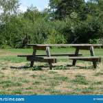 Wooden Picnic Table And Bench In A Park Stock Photo Image Of Furniture Picnic 140852504