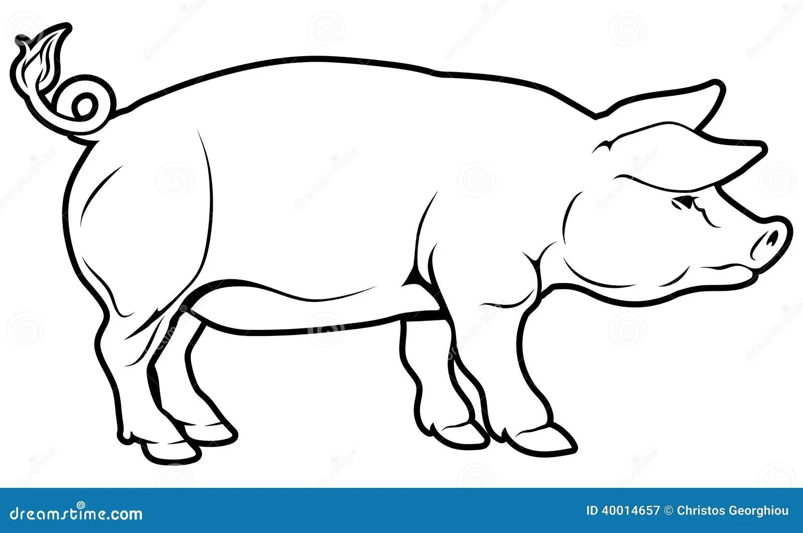 Pig Illustration Stock Vector