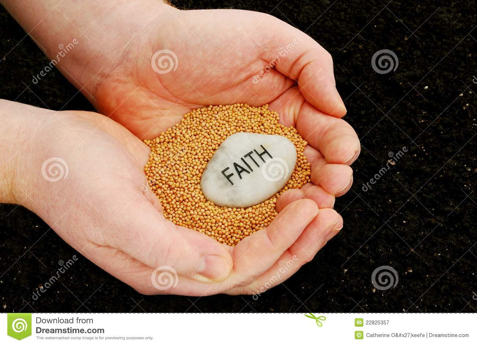 Planting Seeds Faith