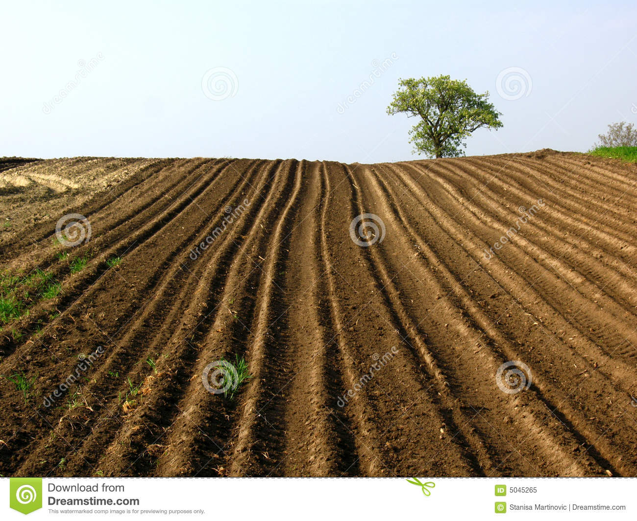 https://i1.wp.com/thumbs.dreamstime.com/z/plowed-field-5045265.jpg